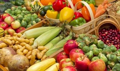 תזונה נכונה היא חלק חשוב מתהליך ההרזיה