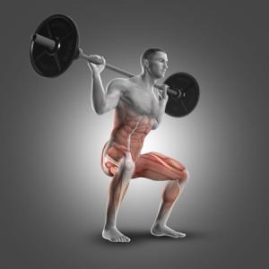 סקוואט - תרגיל המפעיל קבוצות שרירים רבות